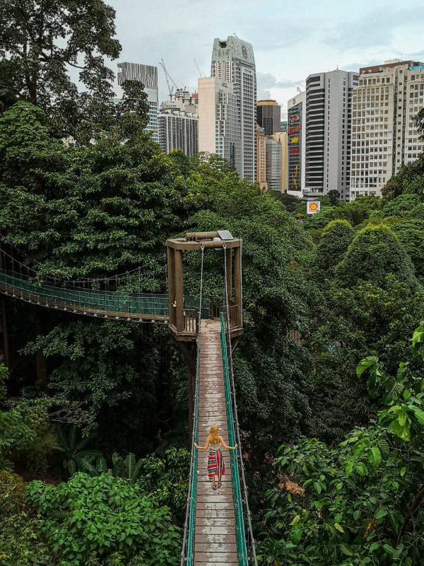 KL Forest Eco Park in Kuala Lumpur Malaysia whereismella